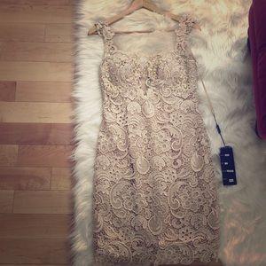 Beautiful Cinderella lace champagne dress